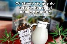 Herbatka konopna ma zielonkawy kolor, który jest spowodowany dłuższym dojrzewaniem roślin i zbiorem w czasie, gdy zawartość CBD jest na najwyższym poziomie.  CBD jest jednym z n...