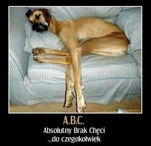 A. B. C. D. E - Absolutny Brak Chęci Do Edukacji