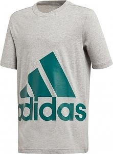 Koszulka dziecięca Big Logo Tee szara r. 140 (DJ1754)