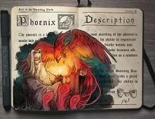 Dumbledore i Faweks