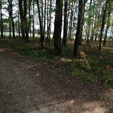 Aktywna niedziela ~ rower ~ 25 km