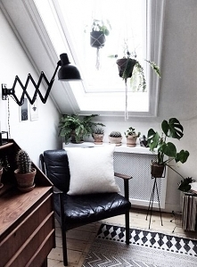 Piękne mieszkanie we Wrocławiu