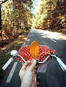 Idzie jesień:)
