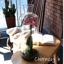 Kopuła Chimney h ze szklaną podstawą, idealna dla stworzenia w niej lasu, ogr...