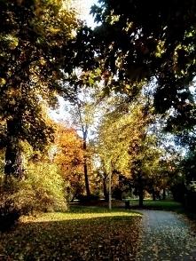 """""""Jakże się cieszę, że żyję na świecie, w którym istnieje październik! Jakież ..."""