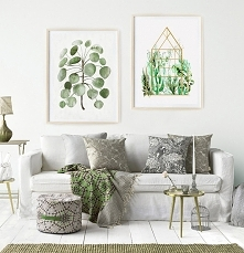 Grafiki botaniczne | 50x70 cm