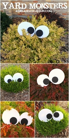 Krzaki mają oczy... :D