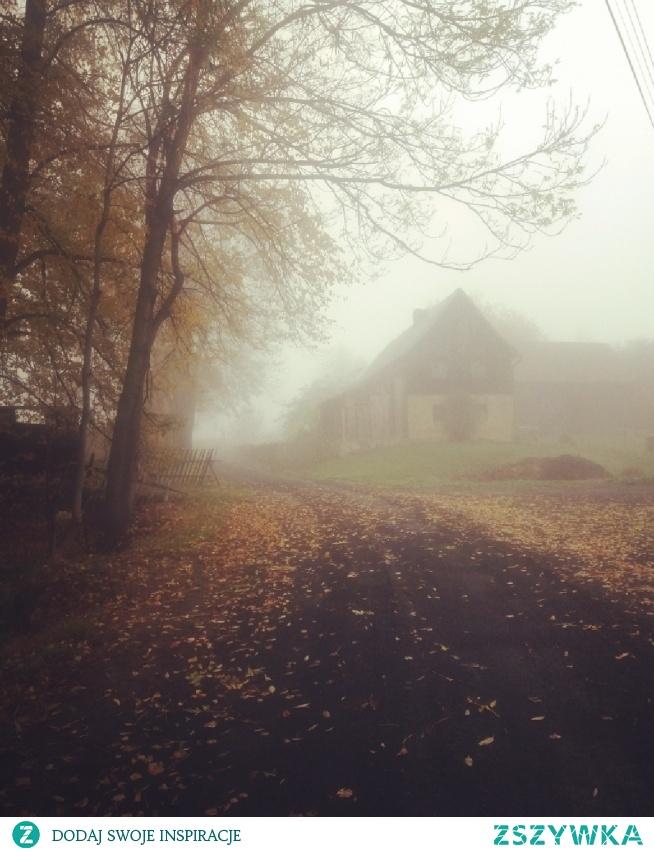 #november in czech republic