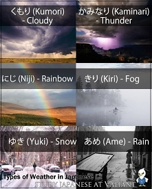 ~pogoda~