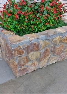 Kamienny zakątek kwitnie je...