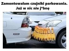 Idealny czujnik parkowania.