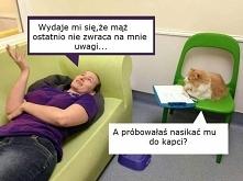 Koci psycholog :)