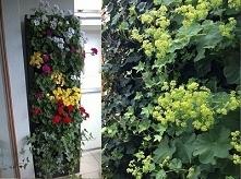 Die vertikalen Gärten sind eine Lösung für die Schaffung eines freundlicheren...