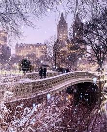 Central Park, Nowy York ❤️❤️
