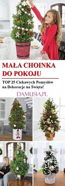 Mała Choinka do Pokoju: TOP...