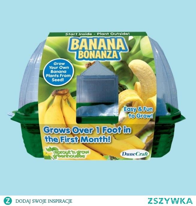 Domowa Uprawa Bananowca od Toys4Boys