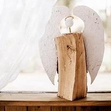 anioł w pałacu Śródka