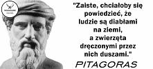 Pitagoras - starożytny filozof był wegetarianinem!