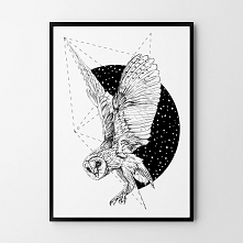 Plakat Sowa geometria