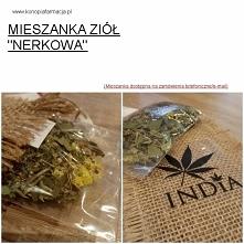 """MIESZANKA ZIÓŁ """"NERKOWA"""" KONOPIAFARMACJA"""