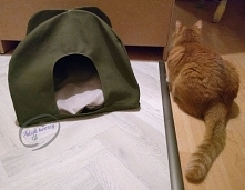 Dlaczego koty lubią się chować? Może warto wymyślić dla swojego mruczka jakąś...