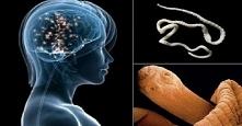 Jedząc ten produkt możesz mieć robaki w mózgu