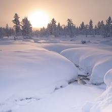 Laponia zimą. Tydzień w kra...