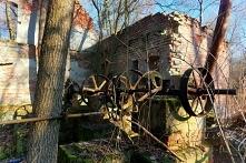 Przemysłowe ruiny i dzika p...