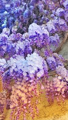 Taka wiosna; )