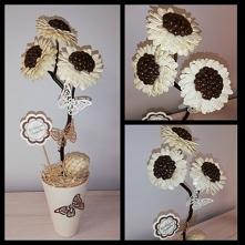 Moje dzieło - kwiaty z nasion kawy i pestek dyni - prezent dla rodziców