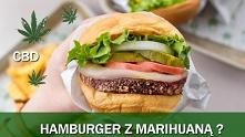 W sobotę 20 kwietna w amerykańskiej burgerowni Carl's Jr. w Denver w stanie Colorado zadebiutuje hamburger z CBD. Kanapka o nazwie The Rocky Mountain High CheeseBurger Delight b...