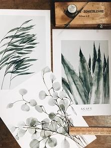 Komplet 3 botanicznych printów