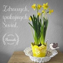 Zdrowych, spokojnych Świąt Wielkanocnych, spędzonych w miłym dla siebie groni...