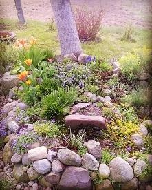 Wiosna :) #springishere #my...