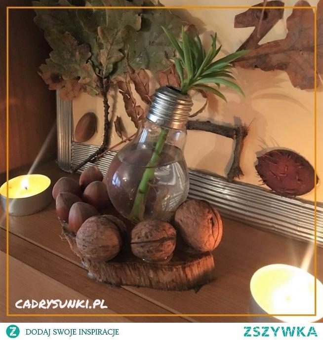 Wazon dekoracyjny ze starej żarówki. A decorative vase from an old light bulb.