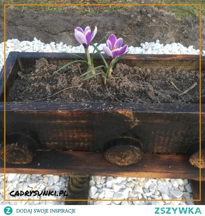 Drewniana donica na kwiaty w kształcie wagonu kolejowego. Drewniana donica na kwiaty w kształcie wagonu Wooden flower pot in the shape of a railway wagon