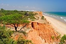 Portugalia. Praia da Falésia