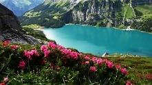 Szwajcaria. Oeschinensee