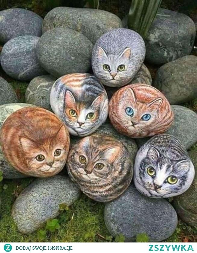 Kocie kamienie