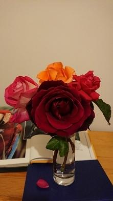 4 róże z jednego ogrodu i k...