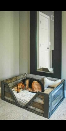 psie łoże