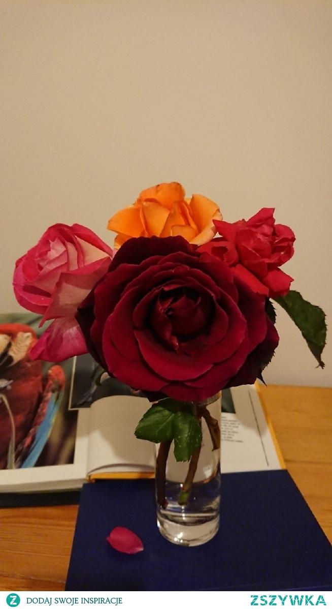 """4 róże z jednego ogrodu i każda inna a tylko jedna pachnie , aromaterapia w domu z natury. Jak to mówią -""""nic nie robię leżę i pachnę."""""""
