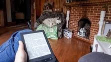 Ja czytam a Husky śpi ;)