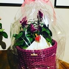 Kwiaty, wino i koszyk <3...