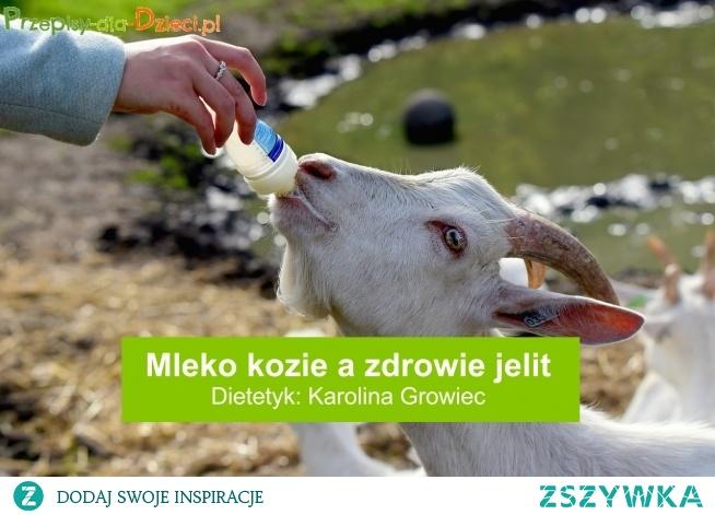 """Według opublikowanych niedawno danych na łamach """"British Journal of Nutrition"""" mieszanki dla niemowląt oparte na mleku kozim mogą stanowić lepszą alternatywę dla zdrowia jelit pośród dostępnych mlek modyfikowanych. Szczegóły w artykule. Link poniżej."""