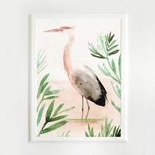 ptak| A4