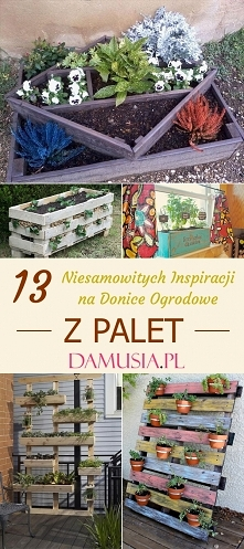 DIY Donice z Palet – TOP 13...