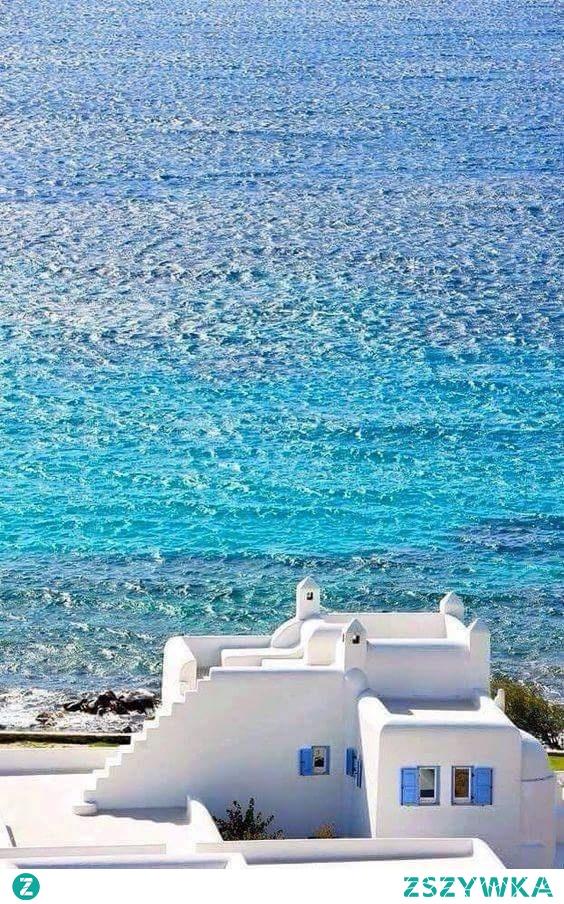 Niebieska*