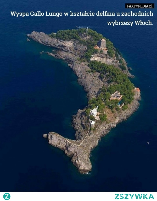 Wyspa Gallo Lungo.