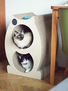Domek-drapak dla kota Mr. P...